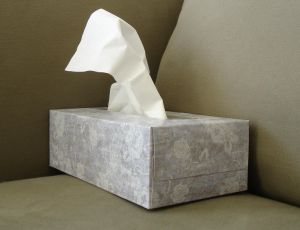 [Tissue box by davidlat]